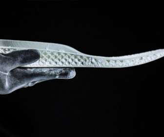 Your Future Shoes – Only For You, Designed & 3D Printed By You